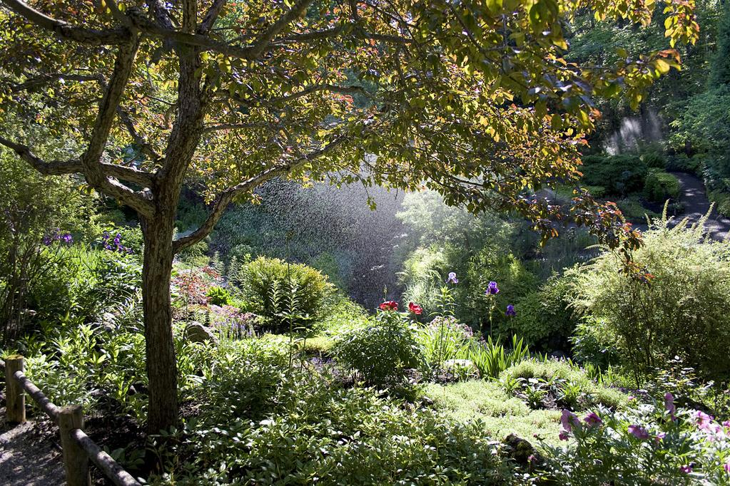 The Most Beautiful Botanical Gardens To Visit In Canada Lifestyle