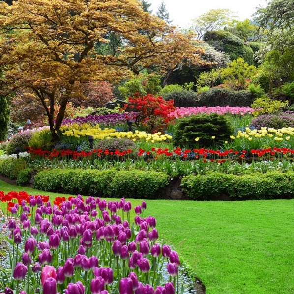 The Most Beautiful Botanical Gardens To Visit In Canada