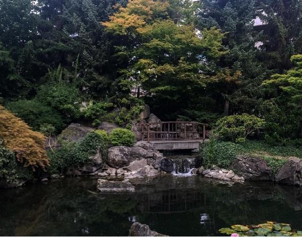 Discover okanagan valley british columbia this fall for Koi fish pond kelowna