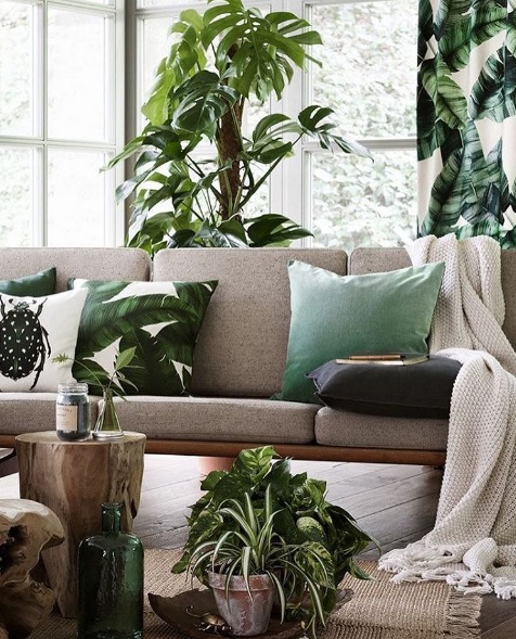 tropical dcor causes a sensation as a hot new design trend - Tropical Decor